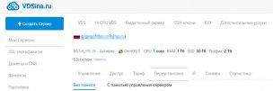 Преимущества использования хостинг-провайдера vdsina.ru