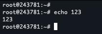 echo 123